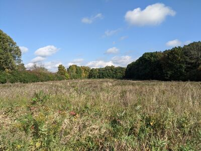 Scio Twp Land Preservation Purchases 93 Acres