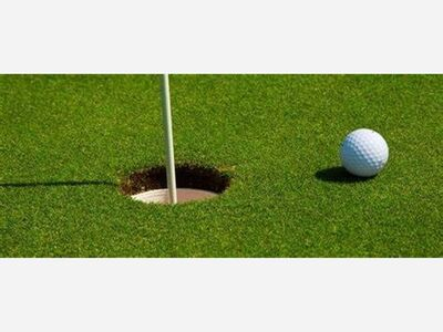 Dexter Golfers Finish 16th at D1 State Finals